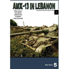 Blue steel 5 AMX-13 abandoned in Lebanon