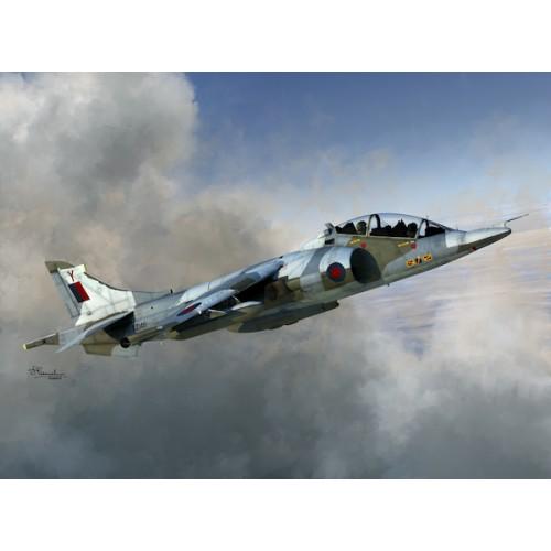 BAe Harrier T Mk.2/Mk.2A/Mk.4/Mk.4N 1/72