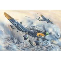 Junkers Ju-87D-5 Stuka 1/24
