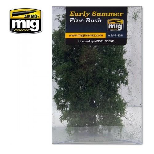 Fine bush early Autumm