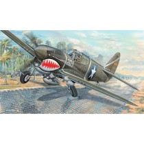 Curtiss P-40F Warhawk USAAF all metal fighter with Packard Merlin engine  1/32