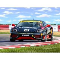 "Ferrari 360 Challenge ""N. Graf"" easykit 1/32"
