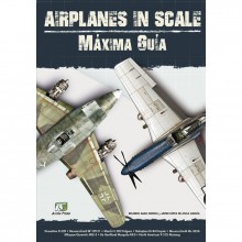 AIRPLANE IN SCALE