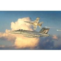 F/A-18 E SUPER HORNET 1/48