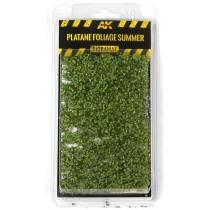 PLATANE FOLIAGE SUMMER