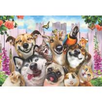 Puzzle Anatolian Selfie de Cachorros de 500 Piezas