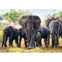 Puzzle Trefl Elefantes Africanos de 1000 Piezas