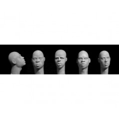 5 heads, Bare heads, black African features 1/35