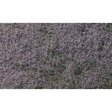 Flowering Foliage™ Purple