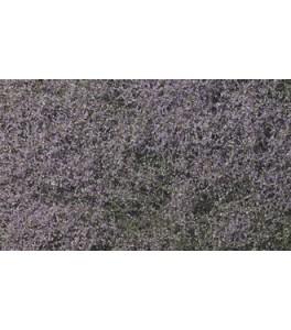 Flowering Foliage™ Purple