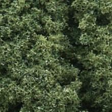 Foliage Cluster medium green