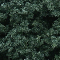 Foliage Cluster dark green