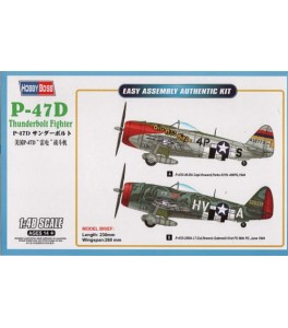 Republic P-47D Thunderbolt Fighter 1/48